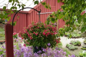 Hemingway Farms in Spring