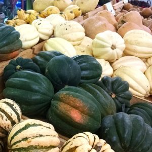 Fall brings our varieties of squash