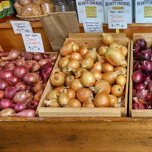 Our own red and yellow onions.